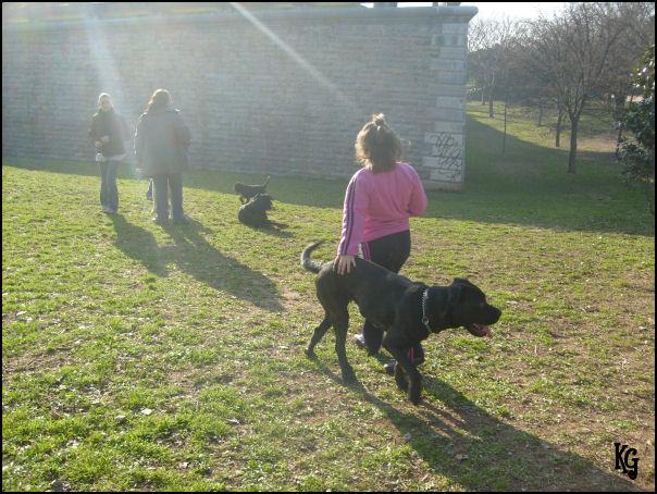 http://empia.cowblog.fr/images/PhotosEmpiade11a18mois/S6302846.jpg
